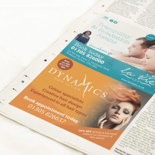La-vie_Dynamics-press-advert