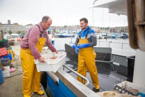 Dorset-Shellfish